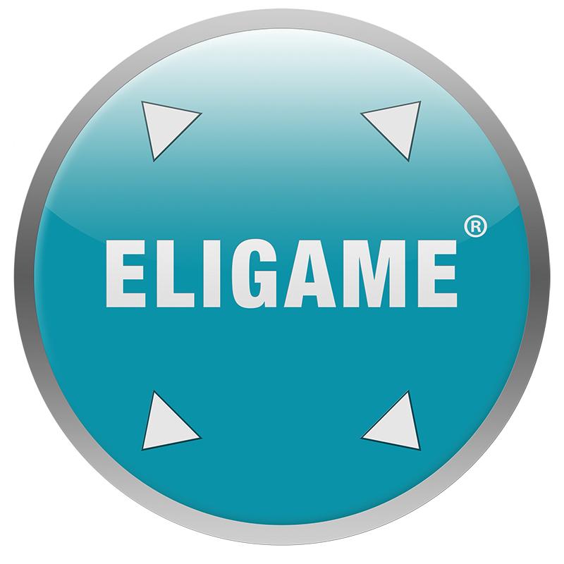 ELIGAME_2D_old